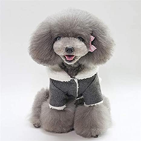 Jeaqw PetSuppliesMisc Ropa para Mascotas otoño e Invierno Chaqueta para Mascotas más Abrigo de Terciopelo para Perros Belleza nórdica Ropa de Invierno para ...