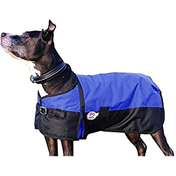 Derby Originals 600D Medium Weight Waterproof Breathable Insulated Dog Coat, Large, Blue