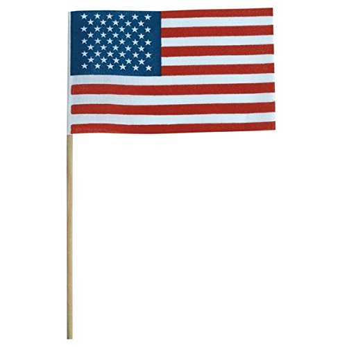 TCDesignerProducts Mini American Flags Pack of 12, 6