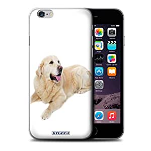 STUFF4 Phone Case / Cover for iPhone 6+/Plus 5.5 / Labrador Design / Dog Breeds Collection