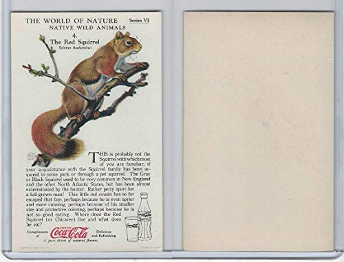 F213-3 Coca Cola, Nature Study, Wild Animals, 1920's, 4 Red Squirrel from OpenBinders