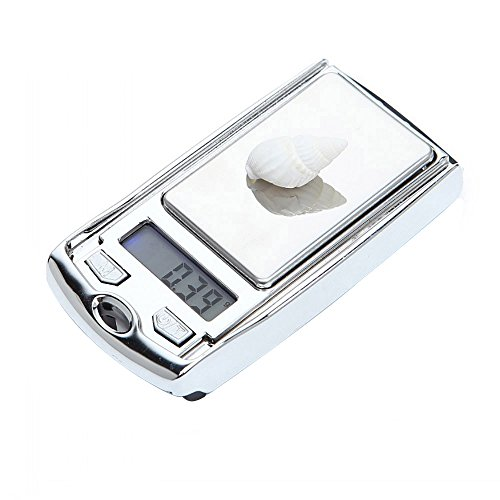 Oldeagle Portable Mini Keychain Digital Kitchen Scale Balance Slim Stainless Steel Electronic Scales ()