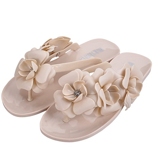 Flat Summer Sandals for Women, Marine Stlye Flip Flop Jelly Flat Slippers for beach Apricot