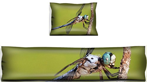 MSD Mouse Wrist Rest and Keyboard Pad Set, 2pc Wrist Support Blue eyed dragonfly that is covered with hair Image 21453994 Customized Tablemats Stain