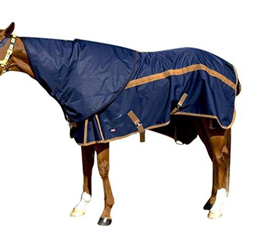 MIZUNO(ミズノ) 馬着 ネック用ラグ600D(乗馬/競走馬用) 32JT5G11 Medium  B01FUBRXEY