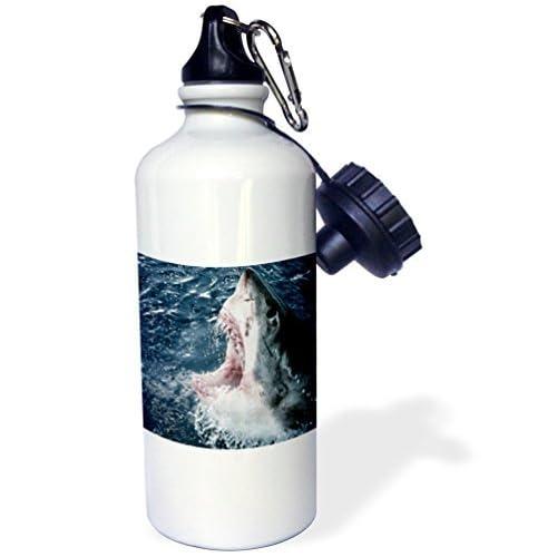 Statuear Tête de requin blanc en aluminium 567gram Bouteille d'eau 600ml Cadeau