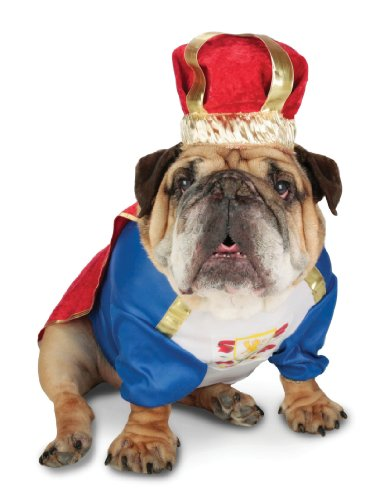 Paper Magic Group Zelda Canine King Costume in 3 Sizes for Pets, My Pet Supplies