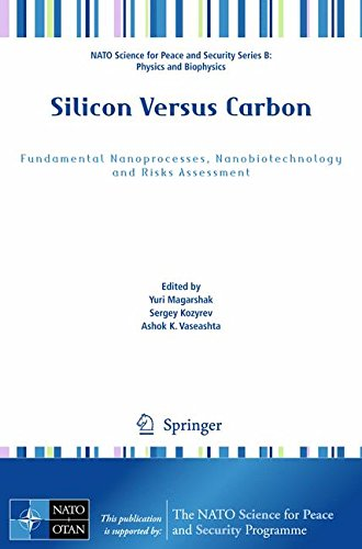 Silicon Versus Carbon: Fundamental Nanoprocesses, Nanobiotechnology and Risks Assessment (NATO Science for Peace and Security Series B: Physics and Biophysics) -