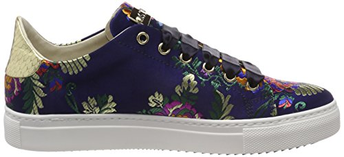 Basses Sneaker Red Sneakers Multicolore Femme Stokton gold blu Af4xw