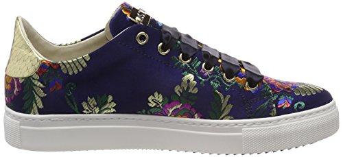 Sneaker blu Femme Sneakers Multicolore Basses gold Stokton Red AqTdwOBd