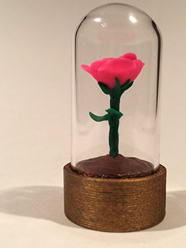 - Beauty and the Beast rose, rose in a tiny dome, enchanted rose, hot pink