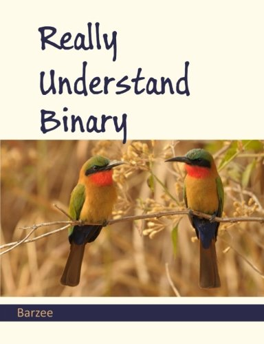 Really Understand Binary