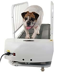 MFR DISCONTINUED 061617 GoPet Treadmill Medium (<132lbs)