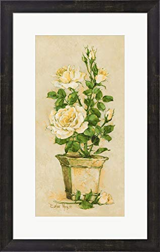 Shades of Rose II by Barbara Mock Framed Art Print Wall Picture, Espresso Brown Frame, 16 x 25 inches