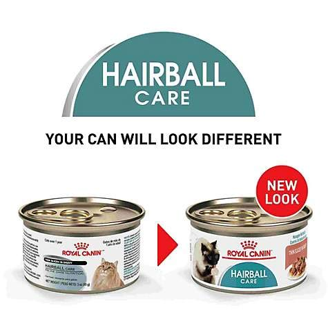 Royal Canin Feline Health Nutrition Hairball Care Thin Slices in Gravy Canned Cat Food, 3 Ounce Can (Pack of 24)
