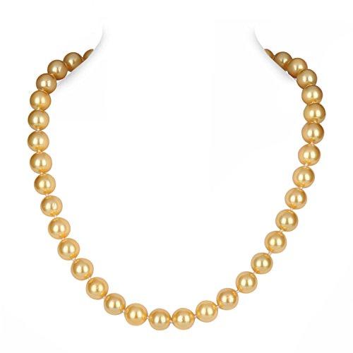 Barch Costume Seashell Necklace Bracelet product image