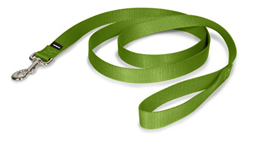 PetSafe Leash, 1
