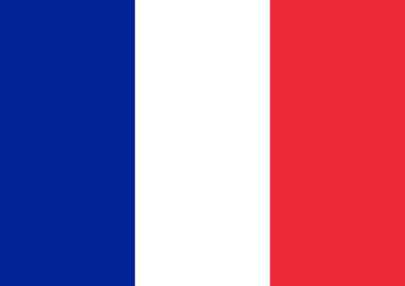 Toland Home Garden Flag of France 12.5 x 18 Inch Decorative Country Nation Garden Flag