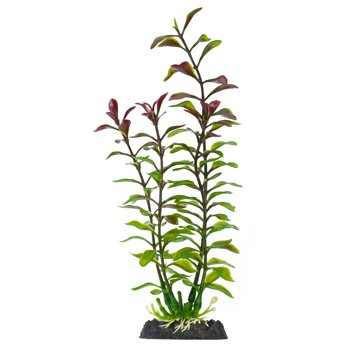 Penn Plax Finding Nemo Blooming Ludwigia Red Plant, ()