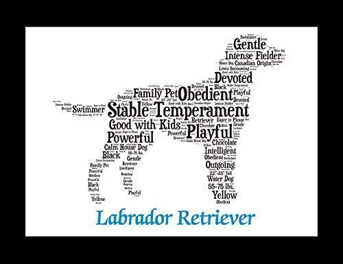 (Labrador Retriever Dog Wall Art Print - Personalized Pet Name - Gift for Her or Him - 11x14 matted - Ships 1 Day)