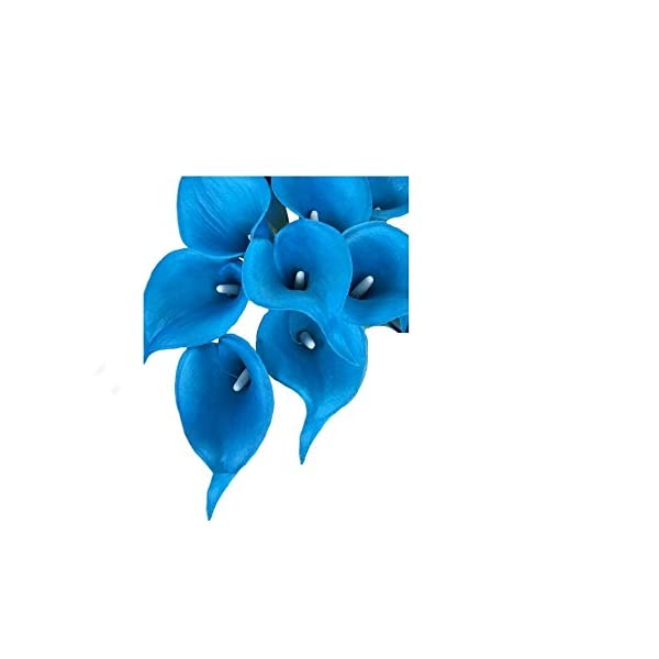 Angel Isabella, LLC 20pc Set of Keepsake Artificial Real Touch Calla Lily with Small Bloom Perfect for Making Bouquet, Boutonniere,Corsage (Malibu Turquoise)