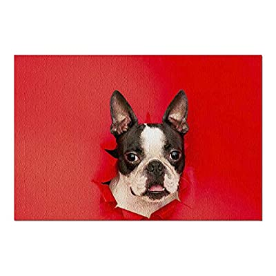 Head of a Boston Terrier Dog Sticking Out of Ripped Red Paper 9019183 (Premium 1000 Piece Jigsaw Puzzle for Adults, 20x30, Made in USA!): Toys & Games