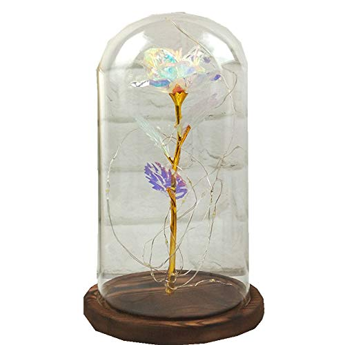 (✔ Hypothesis_X ☎ Enchanted Rose Lamp with Petals & LED Light,Rose for Home Decor Holiday Party Anniversary Wedding Mother's)