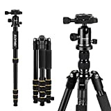 Best Aluminum Tripods - ZOMEi Q666 Magnesium Aluminum Alloy Light Weight Portable Review