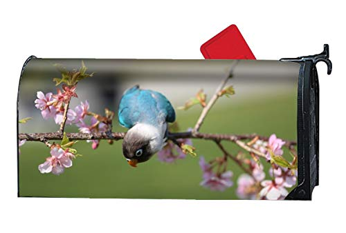 Horse Post Mount Residential - BABBY Naughty Blue Parrot - Mailbox Makeover - Vinyl Magnetic Cover