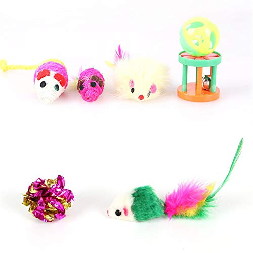 Amazon.com : Best Quality 12 pcs/Set pet cat Funny Toys Small Mini Play Mouse Toy Ball Toys with Bells Gift for pet Dogs cat Toys Set : Pet Supplies
