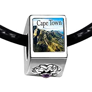 Chicforest Silver Plated Travel Cape Town Photo Purple Amethyst Crystal February Birthstone Flower Charm Beads Fits Pandora Bracelets