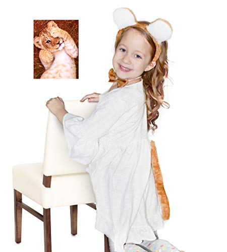 Baby Lion Cub Dress Up Holiday Fun - Cub Ears Headband with Bowtie and Tail Set - by Felix and Wise