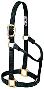 Weaver Leather Original Non-Adjustable Halter, Small Horse Size, Black
