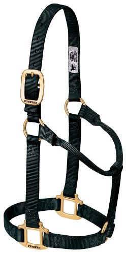 (Weaver Leather Original Non-Adjustable Nylon Horse Halter, Average, Black)