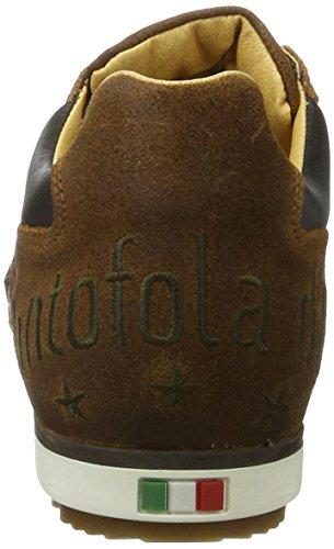 tortoise Shell Pantofola Marrone Grip Uomo Imola D'oro Low jcu Sneaker qrq480Hw