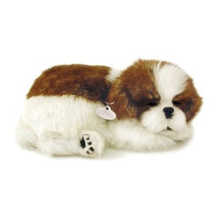 Perfect Petzzz 820 Shih Tzu by Perfect Petzzz (Perfect Petzzz Shih Tzu)