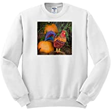 3dRose Danita Delimont - Chickens - Canada, B.C, COWICHAN Valley. Pumpkins and Folk Art Rooster - Sweatshirts