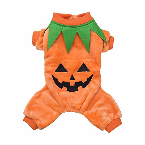iiniim Dog Cat Pumpkin Halloween Costume Pet Party Photoshoot Jacket Apparel Coat Orange S (Kitten In Costume)