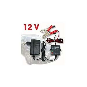 Relaxdays conservación Cargador de batería 12V