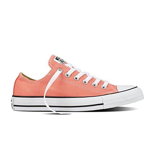 Converse Chuck Taylor All Star Seasonal Colors Low Top Shoe SUNBLUSH Men's Size 7.5/Women's Size 9.5