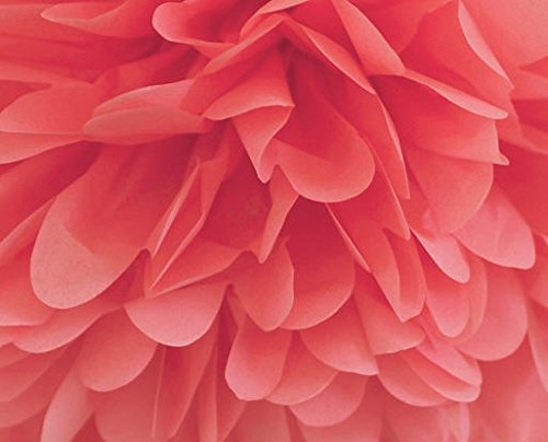 Cakesupplyshop Packaged 24pack Bright Coral Extra Large Gift Wrap Pom Pom Tissue Paper