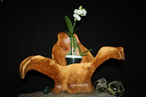 Wooden Vase Rustic Bowl Sculpture 20'' X 19'' X 14'' | #hwa169 by TikiMaster (Image #3)
