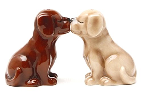 Choc Lab (Pacific Giftware Labrador Puppies Magnetic Salt and Pepper Shakers Set, Blond/Chocolate)