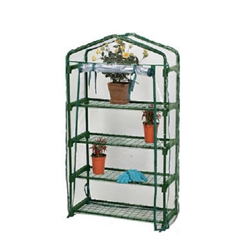 Bloom 4 Tier Greenhouse For Sale