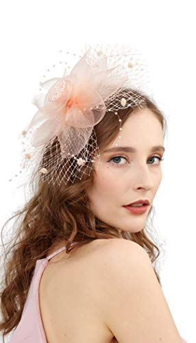 Fascinators Hats for Women with Hair Clip Tea Party Hats Feather Wedding Headware Bridal 1920s Headpiece(2-champagne)]()