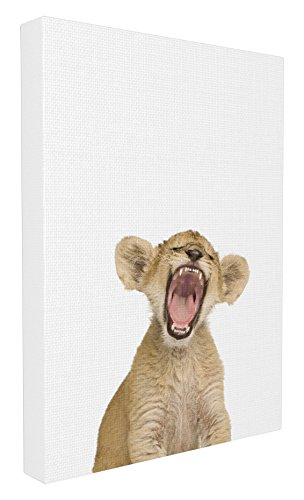 (Stupell Home Décor Baby Lion Cub Studio Photo Stretched Canvas Wall Art, 16 x 1.5 x 20, Proudly Made in USA )