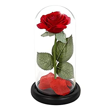 Amazon Beauty And The Beast Rose Red Silk Rose That Lasts