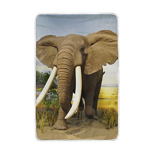 CPYang Africa Savannah Animal éléphant Jeté de lit Doux et Chaud en Microfibre Lit canapé couvertures pour Adulte Filles garçons Enfants 152 x 229 cm