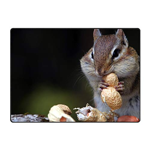 FANMIL Anti Slip Welcome Door Mat Chipmunk Nuts Food Sit Entrance Doormat Indoor Outdoor for Home Decor
