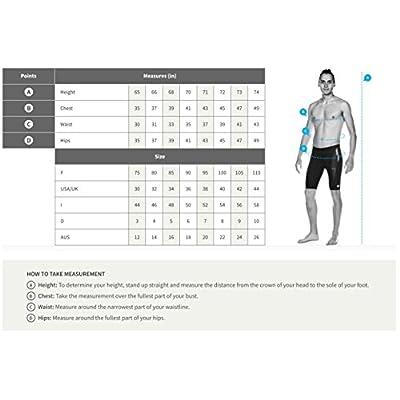 .com : Arena Men's Team Stripe MaxLife Brief Swimsuit : Clothing